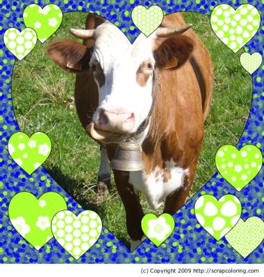 L'amour vache