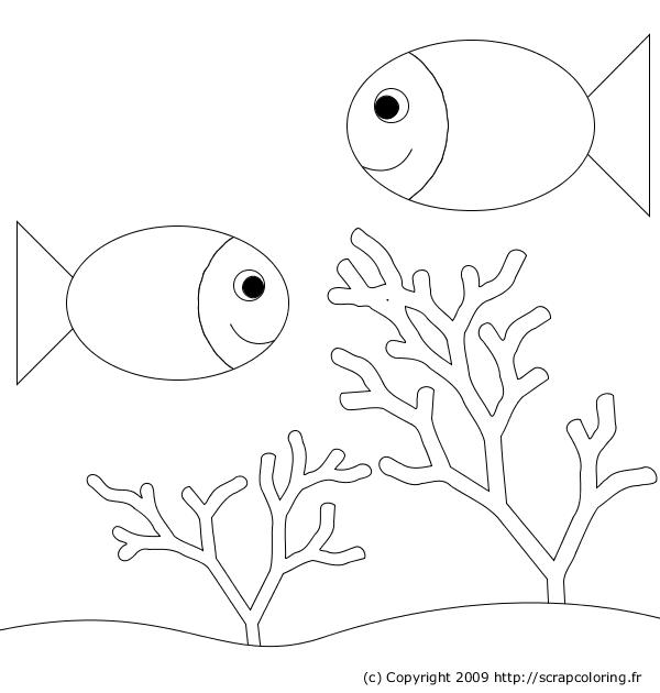 Coloriage Aquarium Et Poissons