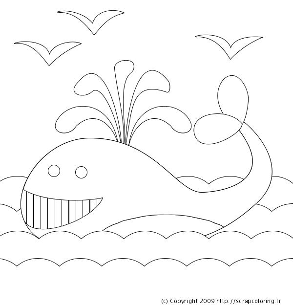Coloriage Baleine En Ligne.Coloriage Baleine