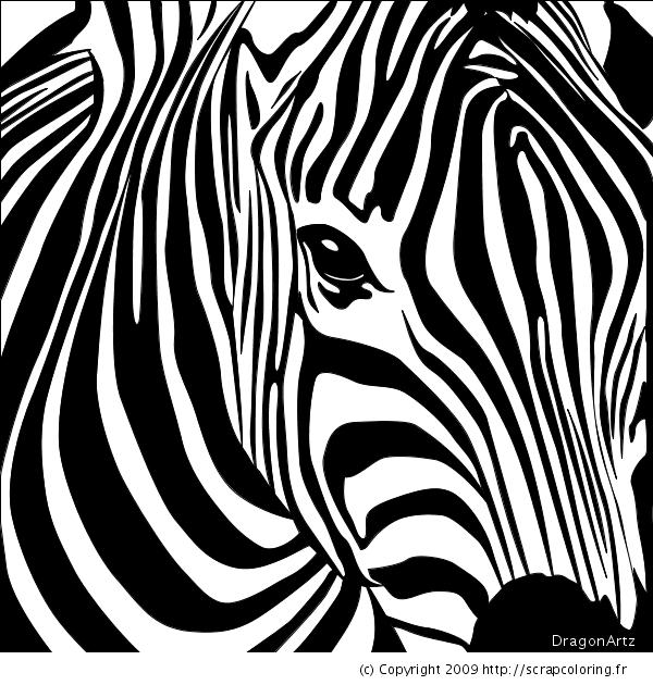 Coloriage Tete De Zebre