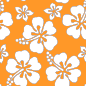 motif hawaïen - fleurs d'hibiscus et plumeria